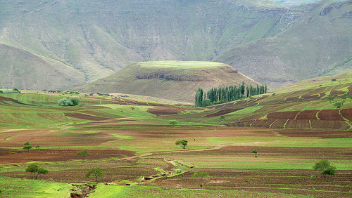 Agriculture in Lesotho faces a catastrophic future.