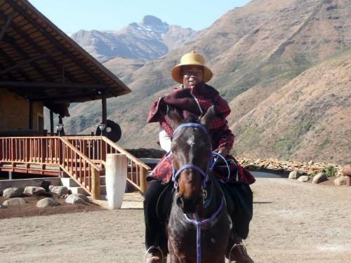 Basotho pony and rider at Maliba Lodge, Lesotho.
